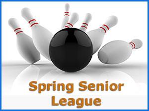 Senior 9 Pin Bowling